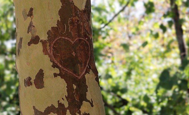 Fotoshooting für Verliebte